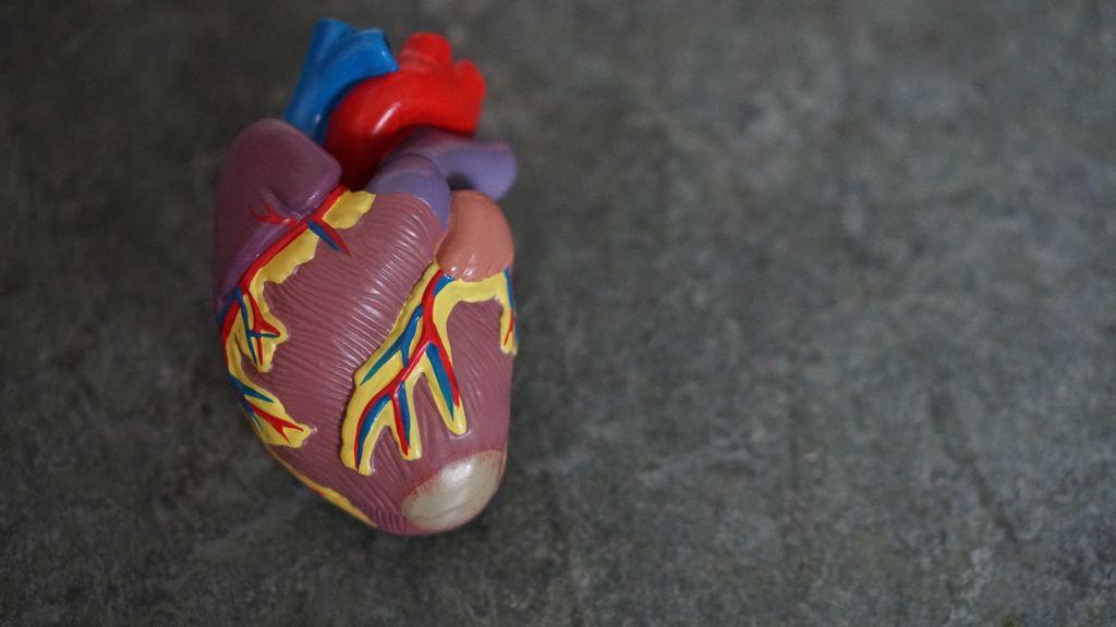 MagneCal D sanatatea inimii