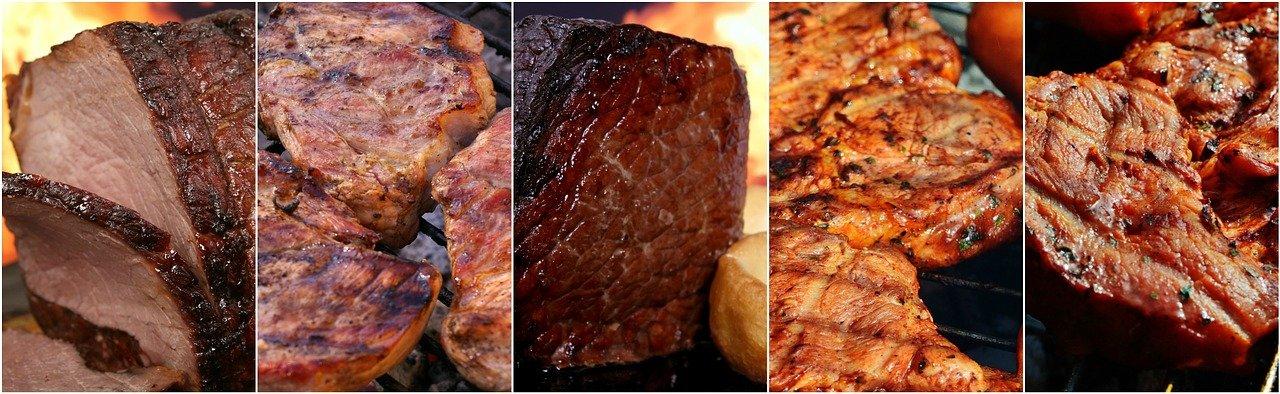 carne gatita nutrienti